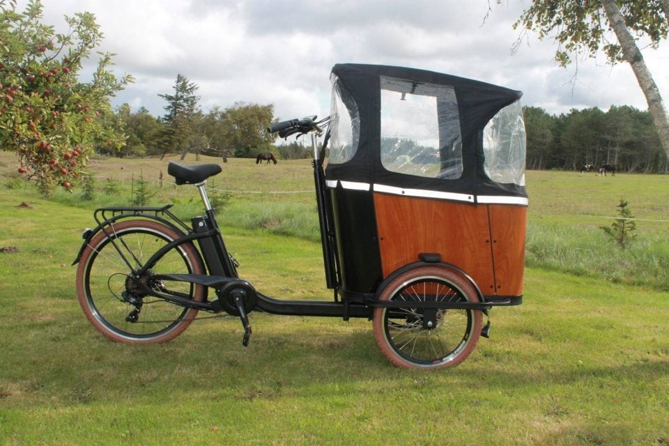 Et billede af en Dream Bikes El- Ladcykel
